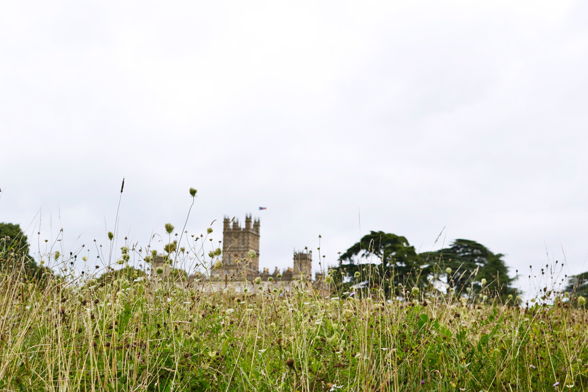 meadow highclere castle